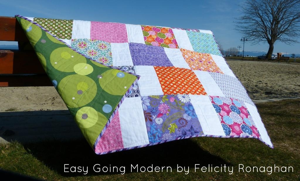 quilt in a day 6 patterns for fast and furious stitchers Cozy Fast And Easy Quilt Patterns