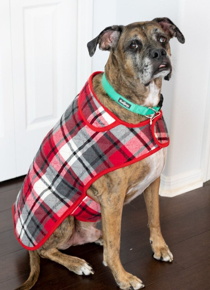 Beautiful diy fur ba coat how to sew a dog coat sewcanshe free 10 Modern Quilted Dog Coat Pattern Gallery