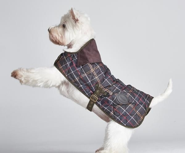 Interesting the barbour tartan quilted dog coat features the attention 10 Modern Quilted Dog Coat Pattern Gallery