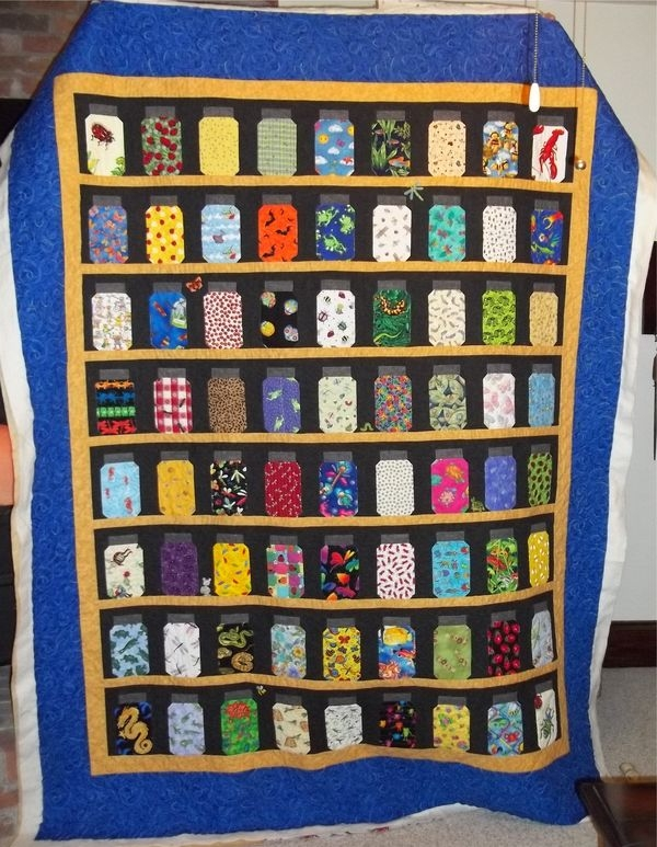 New finished bug jar quilt i spy quilt quilts quilting crafts New Bugs In A Jar Quilt Pattern