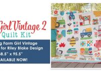 Modern this is not a drill farm girl vintage 2 book is here 11 Cozy Farm Girl Vintage Quilt Book Inspirations