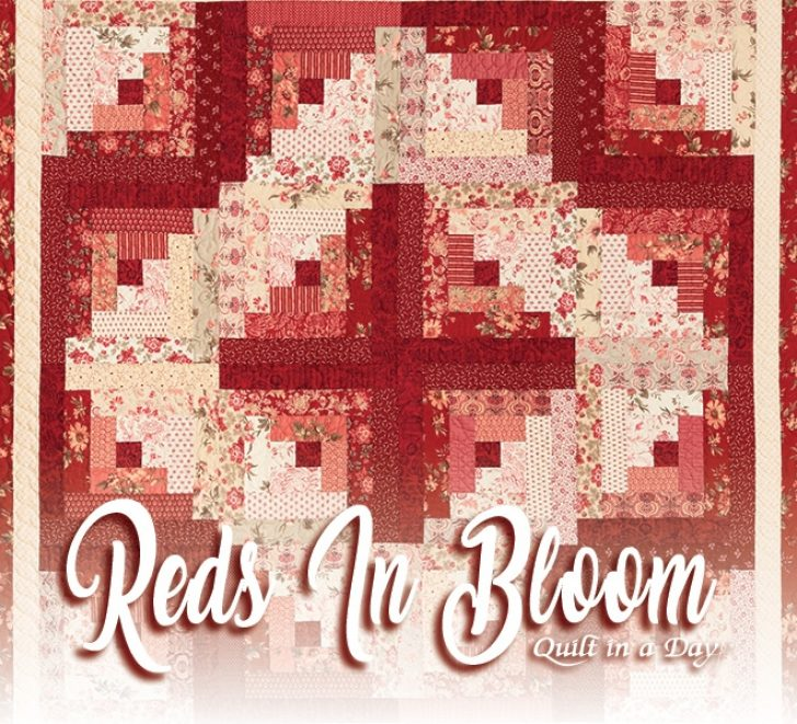 Permalink to Cozy Eleanor Burns Log Cabin Quilt Pattern