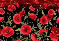 tuscan poppies sunset blooms border 24 x 44 panel Cozy New Poppy Quilt Fabric