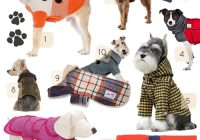 Unique 10 great dog coats diy projects designsponge 10 Modern Quilted Dog Coat Pattern Gallery